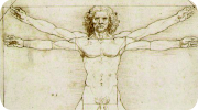 Leonardo Web
